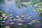 Poster 'Ninfee', per Claude Monet, Dimensione: 91 x 61 cm