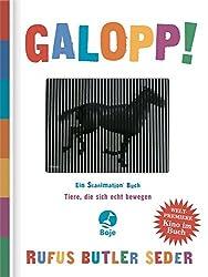 Galopp! (Boje)