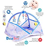 #8: DearJoy Baby Kick and Play Gym with Mosquito Net and Baby Bedding Set (Blue Bunny Print)
