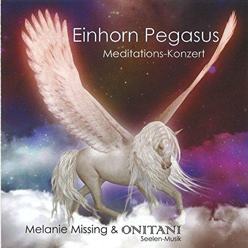 Einhorn Pegasus Meditations Konzert