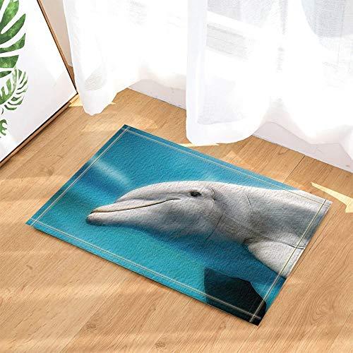 (cdhbh Ocean Creature Decor Dolphin Textur in der Sea für Kinder Bad Teppiche rutschhemmend Fußmatte Boden Eingänge Innen vorne Fußmatte Kinder Badematte 39,9x 59,9cm Badezimmer Zubehör)