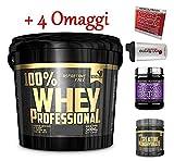 Multi Marca Gold's Nutrition 100% whey Protein Professional 5 kg proteine siero Cioccolato + BCAA Scitec Nutrition + OMAGGI
