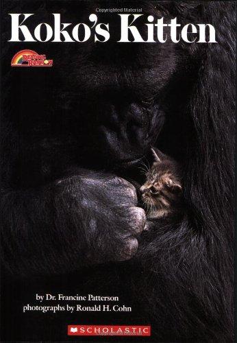 Kokos Kitten (Reading Rainbow Book) -