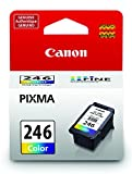 The Best CANON CL-246 COLOR INK - CARTRIDGE - FOR PIXMA MG2420 - 8281B001AA by Generic