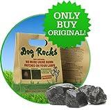 Dog Rocks Steine zum Schutz des Rasens, verhindern Rasenschäden durch Hundeurin, 600g