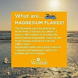 5kg de copos de magnesio-(cloruro de magnesio hexahidrato); el embalaje puede variar