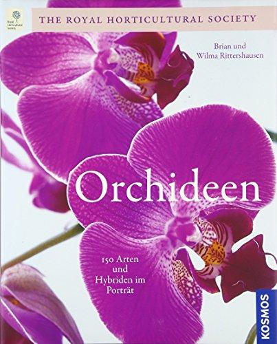 Orchideen: Die schönsten Arten und Sorten -