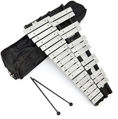 ts-ideen 6045 - Glockenspiel (30 teclas metálicas, incluye funda acolchada y 2 baquetas)