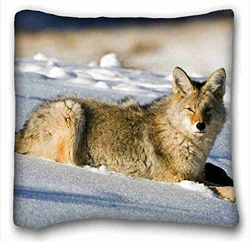 Generic - Funda de almohada rectangular personalizable (iluminación de animales), 40,64 x 40,64 cm (una cara) apta para cama doble PC-Bluish-892