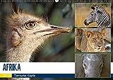 AFRIKA - Tierische Köpfe (Wandkalender 2019 DIN A2 quer): Porträts in freier Wildbahn (Monatskalender, 14 Seiten ) (CALVENDO Tiere)