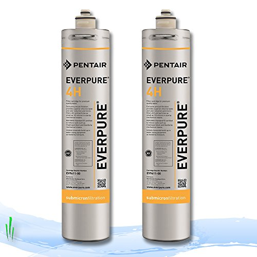 Everpure ev9611–00 4H Ersatz Filter Kartusche 2 Pack (Everpure Filter)