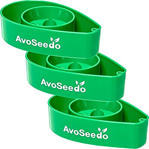 AvoSeedo Bowl Grow your own Avocado Tree - Pack of 3 Green