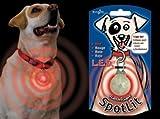 SpotLit LED Hund halsband-licht