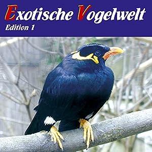 Exotische Vogelwelt: Vogelarten aus aller Welt