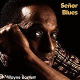 Wayne Bartlett: Senor Blues (Audio CD)