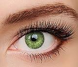 ELFENWALD farbige Kontaktlinsen, HELLGRÜN / SMARAGD, natürlicher Look, maximaler Tragekomfort, ohne Stärke, 1 Paar weiche Farblinsen, inkl. Behälter und Anleitung, 3 - Monatslinsen