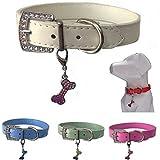 Lushpetz Hundehalsband mit Knochen-Charme Erhältlich in Rosa, Blau, Rot, Grün, Weiß oder Lila für XS, Kleine, mittlere und große Rassen (Klein, Weiß)