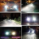 Vanker Ersatzlampe, Scheinwerfer D2S, 35°W, 6.000°K, Xenon HID, für Auto, langlebig, 1 Paar