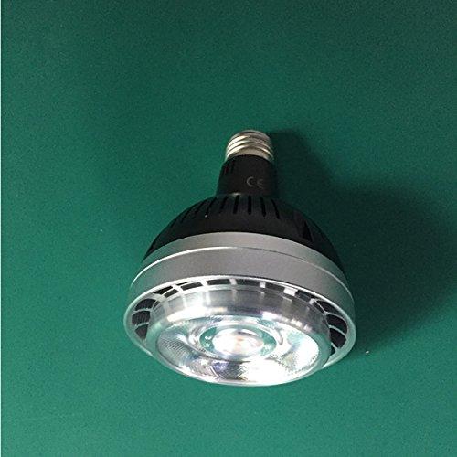 35W 40W LED Scheinwerfer COB PAR30 Scheinwerfer COB PAR30 Gehäuse Kit,正白 (Einbauleuchten-gehäuse-kit)