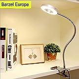 LED Klemmleuchte Bett Leselampe Buch Kinder Schwanenhals Lampe Tischlampe 6W Silber mit 2 Lichtfarben: Kaltweiß und Warmweiß