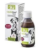 liquidocare® da cane e gatto | Integratore Alimentare Di artrosi, Reumatismi e artrite | 180ML