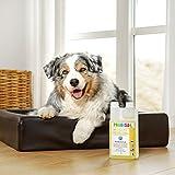 Bio-Reiniger und Geruchsneutralisierer Probisa Micro-Vet 813 für Hund - 9