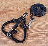 OOFWY Einstellbare Cowboy-Hundegeschirr mit Leine Hundeleine Haustier-Bügel-Seil (Seillänge 120 cm), C, 1.5cm Chest and Back
