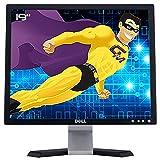 Dell PC-Monitor Pro 19 Zoll E197FPf 0FC998 0XH533 0HM070 TFT VGA 1280 x 1024 4:3 VESA