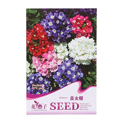 kofun-Blume Samen schönen und Vivid Blume Gemüse Pflanzen Samen, Verbena, 1 Bag