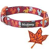 Blueberry Pet Herbst Spaß Bezauberndes Eichhörnchen Designer Hundehalsband mit Deko, Hals 37cm-50cm, M, Festtags-Halsbänder für Hunde