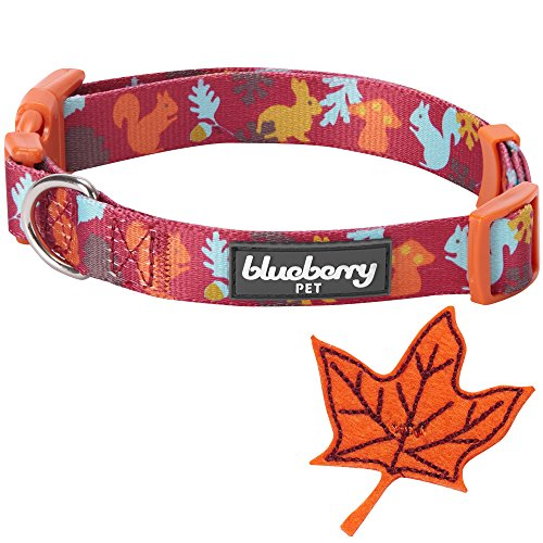 Blueberry-Pet-Fall-Fun-Enchanting-Squirrel-Designer-Dog-Collar-with-Maple-Small-Neck-30cm-40cm-Adjustable-Collars-for-Dogs