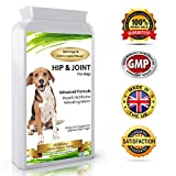 Advanced Hip and Joint Support Glucosamine for Dogs - Powerful Chondroitin, MSM, Curcumin