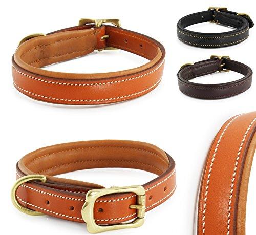 hundeinfo24.de Classic-Line von Pear Tannery: Hundehalsband aus weichem Vollrindleder, S 36-46 cm, hellbraun