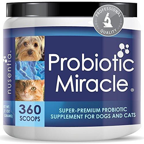 Nusentia Probiotic Miracle Los probióticos Perro Probiotic Milagro para Perros (360 Porciones)