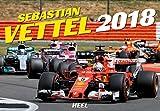 Sebastian Vettel 2018: Formel1-Pilot der Extraklasse