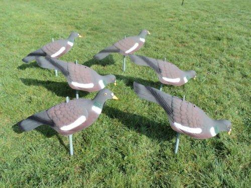 freshgadgetz-6-x-seuelos-de-palomas-de-alta-definicin-con-palo-en-movimiento