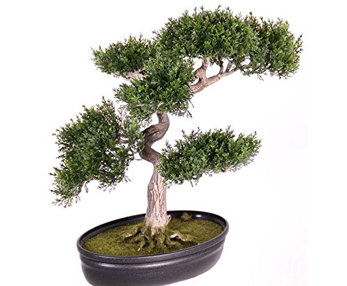 Bonsai Ceder, ca. 225 Blätter mit Schale, 40cm, Kunstfplanze künstlicher Bonsai