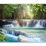 murando - Fototapete Wasserfall 400x280 cm - Vlies Tapete - Moderne Wanddeko - Design Tapete - Wandtapete - Wand Dekoration - Natur c-A-0006-a-b