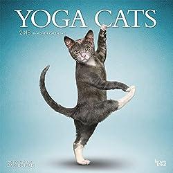 Yoga Cats 2018 Wall Calendar