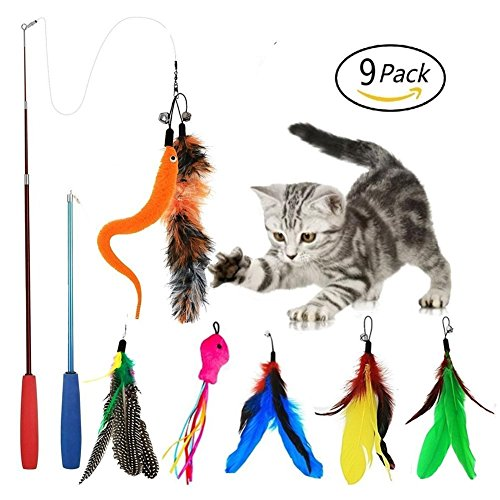 Eatronchoi gatto giocattolo piuma, gatto giocattolo, 9 pezzi a scomparsa interactive cat teaser wand toy set, include 2 bacchette e 7 ricariche piume