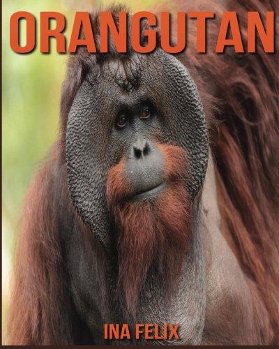 Orangutan: Children Book of Fun Facts & Amazing Photos on Animals in Nature - A Wonderful Orangutan Book for Kids aged 3-7