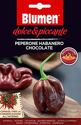 Gemuse Bild Paket Sweet und Spicy Chilli Pepper Habanero Chocolate