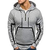 Viviboys Beiläufiger Mens-Fester Reißverschluss-Pullover-Herbst-Winter-langärmliges mit Kapuze Sweatshirt Gray XXXL