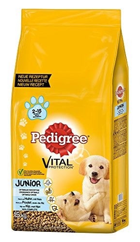pedigree-junior-medium-hundefutter-huhn-und-reis-1-packung-1-x-15-kg