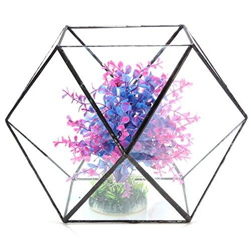 Bazaar Polygon Gewächshaus Terrarium aus Glas Micro Basteln Landschaft Sukkulenten Blumentopf