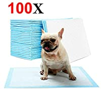 Walgreen® 100 LARGE PUPPY TRAINING PADS TOILET PEE WEE MATS PET DOG CAT ABSORBENT TRAINER