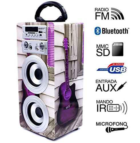 Altavoz Portátil Karaoke con Bluetooth USB SD Micrófono Radio (E025-3)