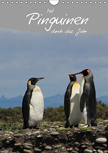 Mit Pinguinen durch das Jahr (Wandkalender 2019 DIN A4 hoch): Dieser Pinguin Kalender begleitet Sie durch das Jahr und bietet genügend Platz für Terminnotizen (Planer, 14 Seiten ) (CALVENDO Tiere)