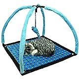 Pet Ting Spielplatz für Katzen, mit Maus, Blau