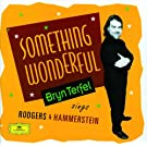 Bryn Terfel - Something Wonderful